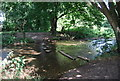 TQ4872 : River Cray by N Chadwick
