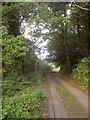 SX3359 : Lane to Cutcrew by Derek Harper