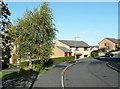 SE0920 : Ravenstone Drive, West Vale by Humphrey Bolton