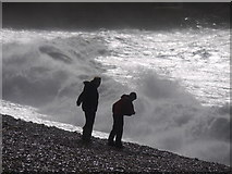 SY6873 : Storm watchers Chesil Cove Portland by sue hogben