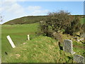 SS7449 : Countisbury Common by M J Richardson