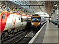 SJ8497 : Platform 8, Manchester Piccadilly by David Dixon