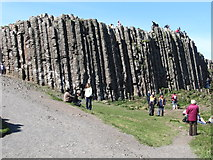 C9444 : Tall hexagonal columns on the landward side of the Giant's Causeway by Eric Jones
