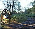 SK5656 : Fountain Dale, Harlow Wood, Notts. by David Hallam-Jones