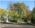 TL3149 : Croydon War Memorial on Remembrance Sunday by John Sutton
