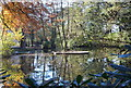 SK5857 : Rainworth Lodge, Rainworth, Notts. by David Hallam-Jones