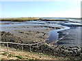 TQ9269 : Outfall into the Swale by Chris Whippet