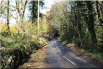 NX9257 : Road to Dalbeattie near Southwick Church by Billy McCrorie