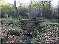 NU1721 : Footbridge over drain in Craggy Wood by Russel Wills