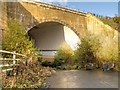SJ8082 : Manchester Airport Runway Trail, Bollin Tunnel by David Dixon
