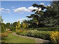 TQ4775 : The Old English Garden, Danson Park by Stephen Craven