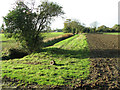 TM4394 : Field boundary ditch, Toft Monks by Evelyn Simak