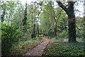 TL1653 : Within Tempsford Millennium Garden Sanctuary by Richard Dorrell