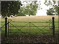 SP8658 : Wrought-iron gate, cast-iron gateposts, Castle Ashby Gardens by Robin Stott
