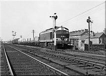 J2664 : Freight train on Antrim Street bridge, Lisburn - 1975 by The Carlisle Kid