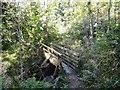 NZ4345 : Footbridge in Hawthorn Dene by Robert Graham