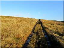 SD7148 : Moorland Track rising over Far Brown Hill by Chris Heaton