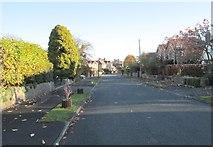 SE1421 : Lyndhurst Grove Road - looking towards Huddersfield Road by Betty Longbottom