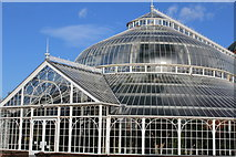 NS6064 : Winter Garden, People's Palace Museum, Glasgow by Leslie Barrie