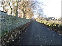 SE1421 : Shepherds Thorn Lane - looking towards Huddersfield Road by Betty Longbottom