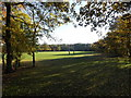 TM2460 : Brandeston Hall Playing Field by Adrian Cable