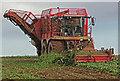 TA0115 : Beet Harvesting near Bonby Top Farm by David Wright