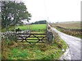 NY7888 : Road to Thorneyburn by Andrew Curtis