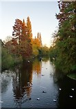 TQ2077 : View from the Palladian Bridge, Chiswick House Gardens, in November by Stefan Czapski