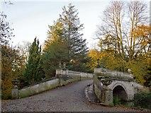 TQ2077 : The Palladian Bridge, Chiswick House Gardens, in November by Stefan Czapski