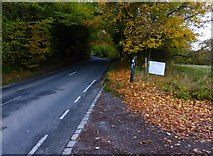 SU8214 : Looking west along the B2141 from the road to Upton Farm by Shazz