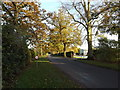 TM2460 : Old Maid's Lane, Brandeston by Adrian Cable