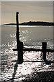 SZ8795 : Groyne by Ian Capper