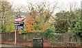 J3975 : No 303 Belmont Road, Belfast (2) by Albert Bridge