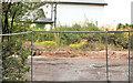 J3975 : No 303 Belmont Road, Belfast (3) by Albert Bridge