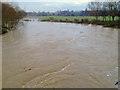 SP2965 : The River Avon breaks its banks and partly floods St Nicholas Park by Robin Stott