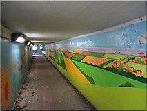 TQ1751 : Subway near Burford Bridge by Gareth James