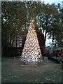 TQ2778 : Christmas Tree, Dovehouse Green, Chelsea, London by PAUL FARMER