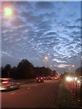 TQ1372 : The A316 in the evening rush hour by Stefan Czapski