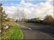ST6677 : Westerleigh Lane by Derek Harper