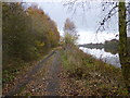 SJ5484 : The track alongside the Manchester Ship Canal by Raymond Knapman