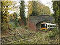 TQ4070 : Railway footbridge near Kings Meadow by Stephen Craven