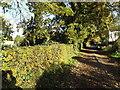 TM2892 : Footpath to Hall Road & entrance to Wood Barn Farm by Geographer