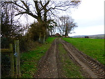 SU8214 : Approaching Bow Hill Farm from the south east by Shazz