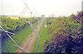 TL3954 : Mullard Radio-Astronomy Array, on railway trackbed west of Lords Bridge by Ben Brooksbank