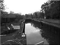 SU9777 : Romney Lock by Eirian Evans