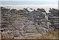 SS0498 : Wave cut platform, Swanlake Bay by N Chadwick