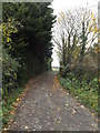 TM3771 : Bridleway to Peasenhall Road by Geographer