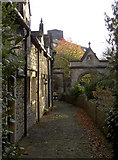 ST8558 : Secluded row by Neil Owen