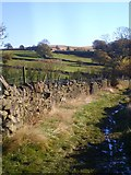 SE1240 : Walled path above Eldwick by Gordon Hatton