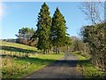 NS4276 : Driveway to Overtoun House by Lairich Rig